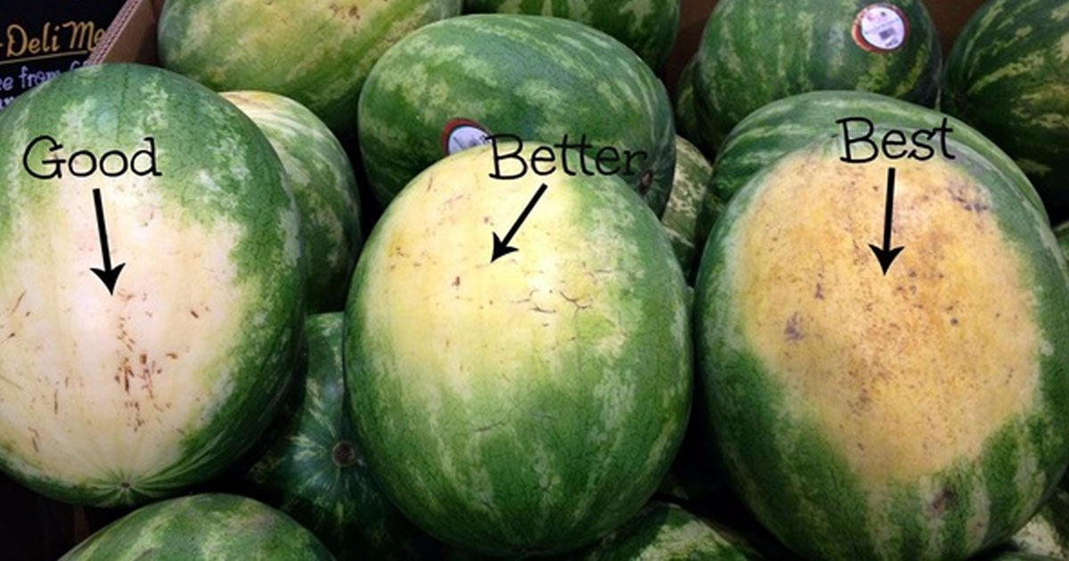 6 tips on how to select the perfect watermelon